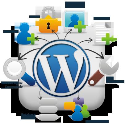 Wordpress Developer Toronto
