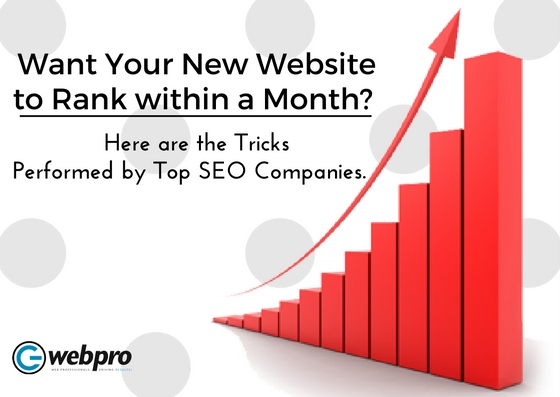 Want Your New Website to Rank within a Month?