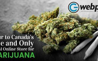 Online Store for Marijuana in Canada